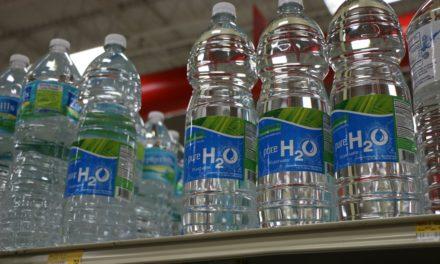 VIDEO : Que faire avec des bouteilles en plastique : 38 idées créatives !