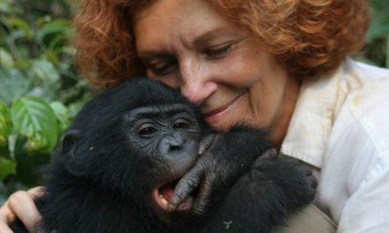 PODCAST : Claudine André parle de Lola Ya Bonobo
