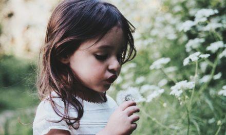 Comment (et pourquoi) aider les enfants à se rapprocher de la nature