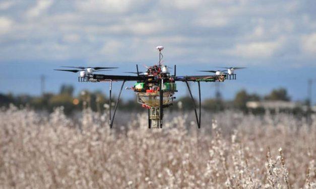 Rapport de l'IPBES sur la biodiversité : l'heure n'est plus aux demi-mesures