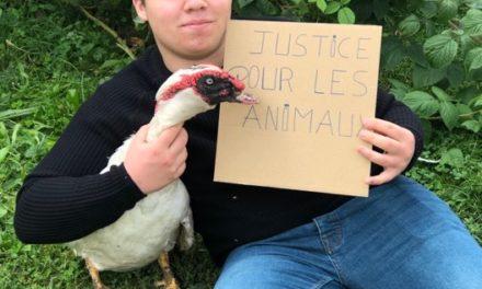 PODCAST : Logan Putzeyse , 18 ans , Futur vétérinaire et engagé a fond pour la cause animale