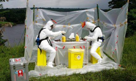 Comment les changements environnementaux font émerger de nouvelles maladies