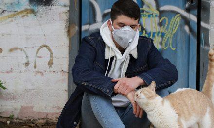 Covid-19 : Et si mon animal était contaminé ? Le point sur les chats, les chiens et les furets