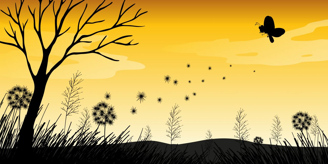 L'écologie expliquée aux enfants et aux ados