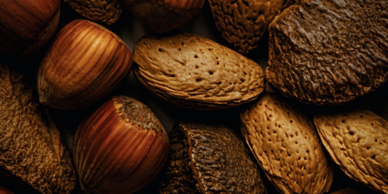 Amandes, noix et autres fruits à coque : que sait-on de leurs effets sur la santé ?