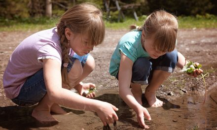L'école dehors : l'exposition à la nature ne fait pas tout !