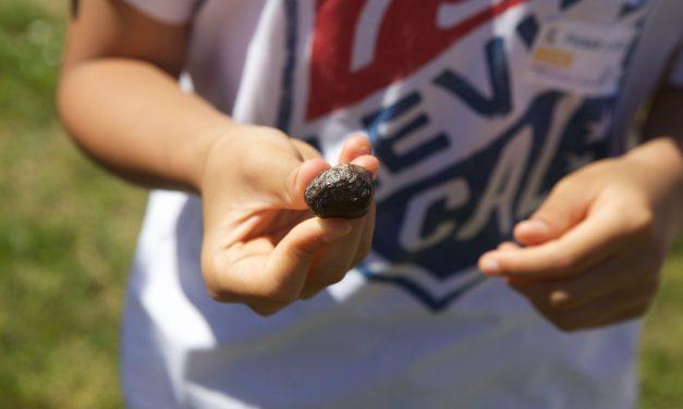Devenez cueilleurs de météorites