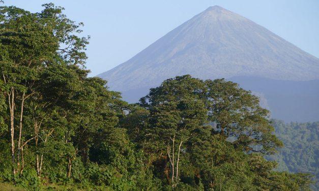 Protection de la biodiversité : retour sur l'évolution des « aires protégées » dans le monde